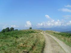 Mottarone – Sentiero R3/4 – R2 – discesa verso Coiromonte e Armeno