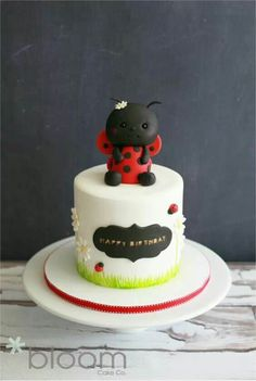 I'm not a huge fan of the actual lady bug (a little creepy?) but the rest is cute! Girly Cakes, Fancy Cakes, Fondant Cakes, Cupcake Cakes, Fruit Cakes, Cupcakes, San Antonio, Bug Cake, 1st Birthday Cakes