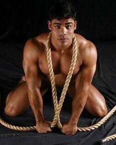 Dekan-Phoenix schwule Pornos Refbecca schwarzer Porno