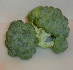 This is the best walk through for freezing fresh broccoli. Another tip: add some lemon juice to the brine so the broccoli stays bright green.