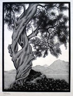 "Exploration of infinite: Maurits Cornelis Escher, ""Olive tree"", 1934. #Laudemio #oil #art www.laudemio.it"