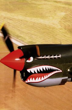P-40.. This one of the reasons I daydreamed about flying as a kid