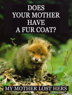 Sorry but there's nothing to be proud of in wearing fur or animal skin. They should be where they are meant to be and where they belong, with the animals.
