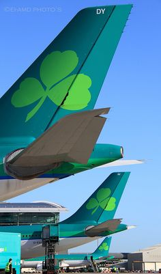 Aer Lingus tail's | Flickr - Photo Sharing!