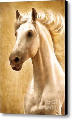 """New artwork for sale! - """"Magnificent Presence Horse Painting"""" - http://fineartamerica.com/featured/magnificent-presence-horse-painting-zeana-romanovna.html"""