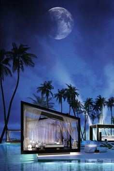Exotic Pools for luxurious living (sick Pool and awesome shot of the sky with lighting from the pool) RealPalmTrees