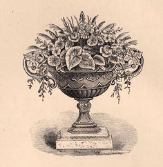 Victorian Garden Clip Art - Wonderful Urn - The Graphics Fairy