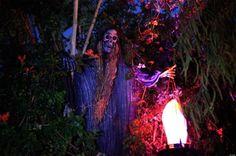 Image from http://www.decoradvisor.net/wp-content/uploads/2013/10/frightening-bony-body-lit-from-below-with-skeleton.jpg.