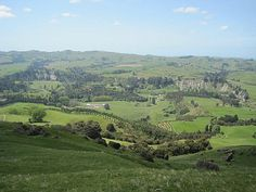 Javaman Travels - Hawkes Bay Region - New Zealand - News - Bubblews