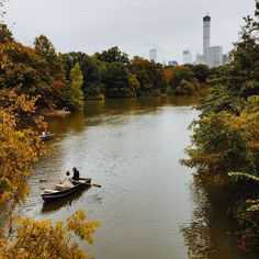 Central Park / photo by Wash News