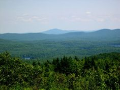 View from the top of Pitcher Mountain. A blog post about blueberry picking on Pitcher Mountain in Stoddard NH