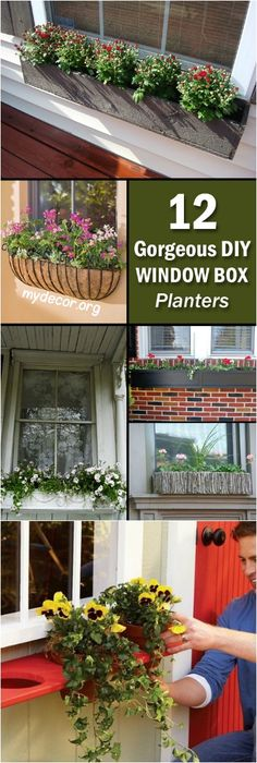 12 Gorgeous DIY Window Box Planters            While our gardens are beautified by flowers and other colorful plants our houses often do not receive nearly as much attention. So, if you want to spice up the outside of your home and provide a fresh, colorful view from the windows, you...
