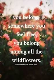 quotes about wildflowers - Google Search