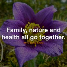 #Family #Quotes #Quote #FamilyQuotes #QuotesAboutFamily #FamilyQuote #QuoteAboutFamily #Health #Together