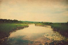 Landscape Photography: A moment in time  8x12 Fine Art Photography Water, sky nature photography river lily pads vintage inspired on Etsy, $35.00