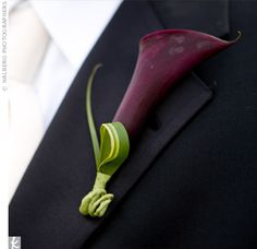 boutonniere- Matt actually likes these- guess he's into L's taste! I'd do it in…
