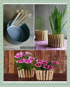 What a cute idea to re-use all those tuna cans! #crafts #recycle #greencrafts
