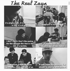 The real Zayn