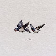 Day 123 : Barn Swallows | Hirundo Rustica. 34 x 15 mm. (for @quinb1 and @mizztbell, from @ninalevim and Mischa). #365postcardsforants #miniature #watercolour #barnswallows #capetown #birds #claireandquinswedding