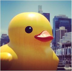 The Giant Rubber Ducky Is Migrating to Pittsburgh