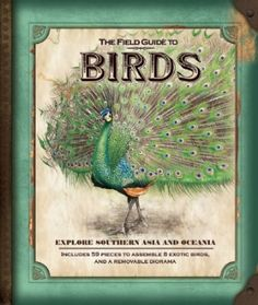 The Field Guide to Birds at theBIGzoo.com, a family-owned toy store.