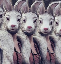 What the Easter Bunny saw in the mirror after partying too hard