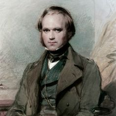 Charles Darwin  portrait by George Richmond 1840. At the southernmost tip of South America in the cold air of Tierra del Fuego at an elevation of 2000 feet Charles Darwin collected a primrose-like species now known as a Primula magellanica.[1] It was 1833 and Darwin was early on in his journey as the naturalist on HMS Beagle. It is likely that Darwin considered these particular plants as not very significant. Just another day in the field observing collecting. There was nothing particularly…