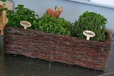 Manuál pro domácí pěstování bylinek: Které se hodí na vaření i na grilování? - Proženy Samos, Pesto, Firewood, Health Fitness, Crafts, Woodburning, Manualidades, Handmade Crafts, Craft