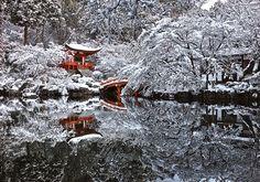 Osaka, five tips by... - Nomad & Villager