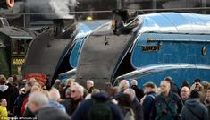 Over the past four days, 50,000 visitors have flocked to see six of the world's greatest steam locomotives gathered together for the last ti...