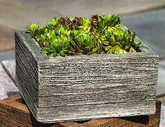 Square Barn Board Planter, Small, Verde Finish Campania I...