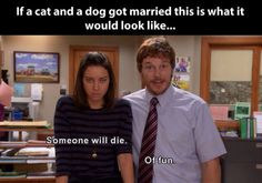 If a cat and a dog ever got married…This is so horribly accurate haha