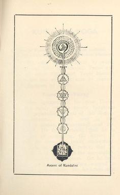 """Kundalini"" energy rising through the spine into the third eye and above./ Chakras/ Tree of Life Tatouage Kundalini, Kundalini Tattoo, Tattoo Geometrique, Little Buddha, Tantra, Third Eye, Compass Tattoo, Yoga Meditation, Sacred Geometry"