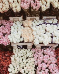 All Things Shabby and Beautiful My Flower, Beautiful Flowers, Natural Candles, Flower Aesthetic, Flower Market, Flower Shops, Tulips, Floral Arrangements, Planting Flowers