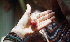 cherry by slainmejifolie
