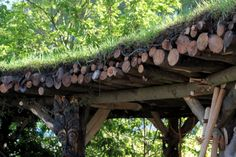 Rustic pergola with green roof made with sawn branches