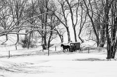 The Amish way cont' by Alessandra Manzotti Winter Road, Amish, Black And White Photography, Outdoor, Chalkboard, Black White Photography, Outdoors, Outdoor Games, The Great Outdoors