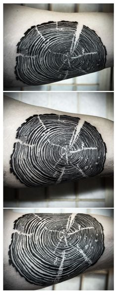 Tree rings tattoo on the arm | Artist: David Hale, Love Hawk Tattoo in Athens, GA