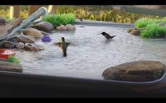 Learn how to create a beautiful DIY bird bath with this stepbystep pictorial tutorial All you will need is an oil pan PVC pipe pump and plastic tub filled with water Post.