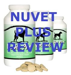 NuVet Reviews: Dogs are People Too