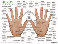 Hand & Foot reflexology chart indicating possible essential oil uses for various reflex points. Itメs great used as reference, education, or for class handouts. Essential Oil Chart, Essential Oils For Pain, Essential Oil Uses, Doterra Essential Oils, Essential Tremors, Latissimus Training, Foot Chart, Reflexology Massage, Reflexology Points