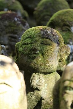 Mossy Jizo statues at Otagi Nenbutsu-ji temple, Kyoto, Japan