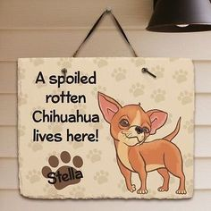 Personalized-Spoiled-Rotten-Chihuahua-Dog-Slate-Plaque