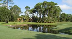 The Palm Harbor #Golf Club was renovated and re-opened in November of 2009, challenging #golfers of all skill levels.