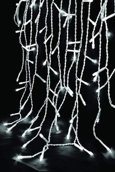 960 LED Christmas Lights Snowing Icicle Multi Function Warm White Light Up. Set of 960 warm white icicle lights that can be used indoor or outdoor with 8 functions control, complete with transformer and clips. Icicle Lights, Led Christmas Lights, White Light, Light Up, Garden S, Mobile App, Warm, Ebay