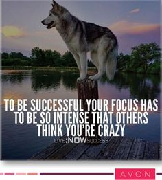 Click the pin to check out success story! Inspiration is Motivation Chase Your Dreams Style Estate Wolf Quotes, Me Quotes, Motivational Quotes, Inspirational Quotes, Qoutes, Rich Quotes, Life Quotes Love, Great Quotes, Youre Crazy