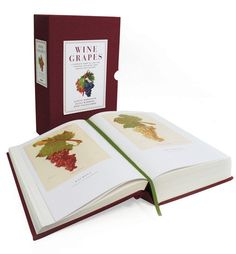 Wine Grapes: A Complete Guide to Vine Varieties, Including Their Origins and Flavours by Jancis Robinson, Julia Harding, Jose Vouillamoz. Used Book in Good Condition. Vigan, Wine Gadgets, Wine Tasting Notes, Make Your Own Wine, Types Of Wine, Book Gifts, Wine Making, Free Reading, Used Books