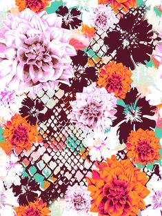 'Croc Floral' Art Print by Aimee St Hill on society6