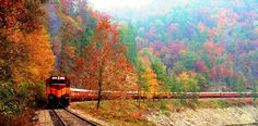 Fall Color Train Excursion on The Great Smokey Mountain Railroad, North Carolina