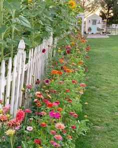 Farm Gardens, Outdoor Gardens, Cut Flower Garden, My Secret Garden, Dream Garden, Garden Planning, Garden Projects, Garden Inspiration, Backyard Landscaping